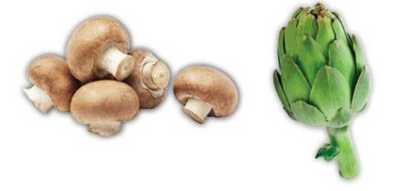 specialty-crops-mushrooms